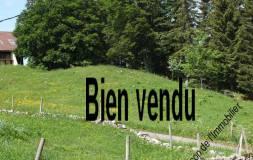 405 LAJOUX :  terrain Lot vendu